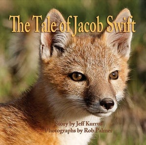The Tale of Jacob Swift