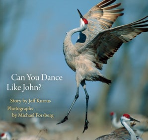 Can You Dance Like John?